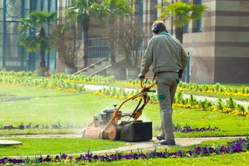 Gärtner mit rassenmäher