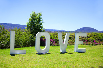 Love sign in the grass