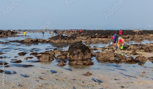 Papiers peints Peche Grande marée, pêche à pied