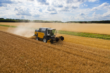 Harvesting grain aerial photo