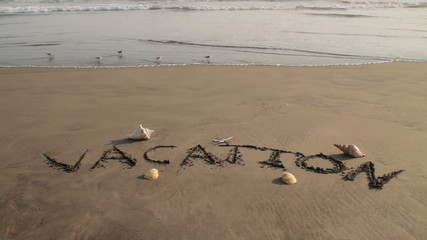 Vacation Sand Text With Sand Pipers Passing By