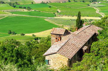 Typical Tuscany landscape.