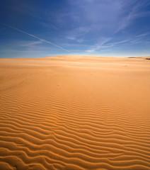 Nadmorska wydma, Morze bałtyckie , Polska