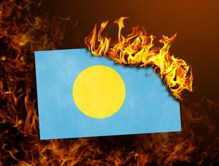 Flag burning - Palau