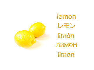 Lerning Many Lungage; LEMON