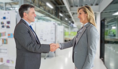 Pleased businessman shaking the hand of content businessman