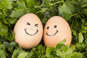 Parsley and eggs - Stock Image macro.