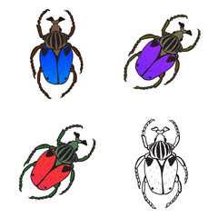 Bright vector set with colorful bugs. Drawing of beetles. Insect