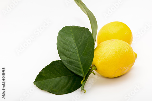 Poster citrons