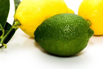 citrons vert et jaune