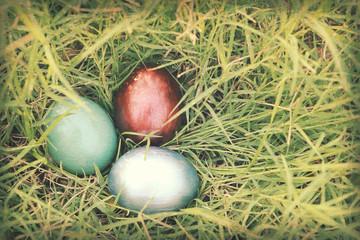 Vintage paper textures, Colorful easter eggs hidden in dense gra