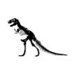 Tyrannosaurus Rex - 80452509