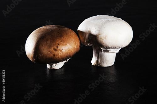 champignon pilze egerling stockfotos und lizenzfreie. Black Bedroom Furniture Sets. Home Design Ideas
