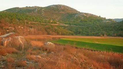 Fertile green fields and small farm