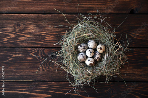 Leinwandbild Motiv Easter quail eggs in the nest on rustic wooden background