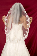 woman in wedding dress and veil from back