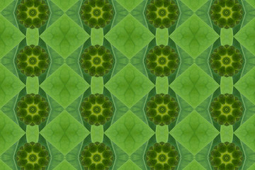 Idea from leaf.( Pattern Green from leaf  concept