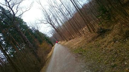 Wald Biker