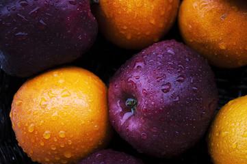 mele e arance bagnate