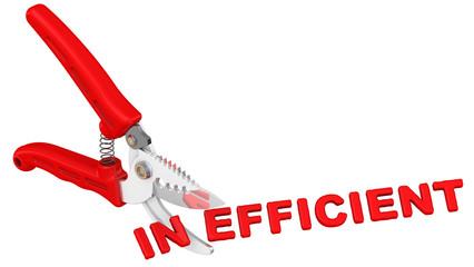 Efficient (эффективный). Концепция изменения заключения
