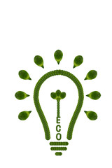 Idea light bulb from leaf.( ECO  concept)