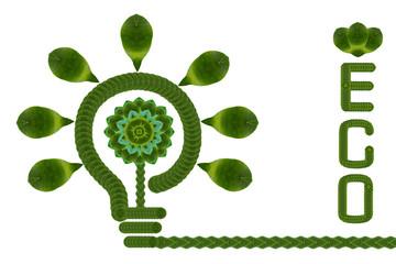 Ecology icon set.(Idea form leaf create)