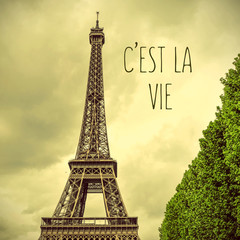 Eiffel Tower and text cest la vie, that is life in french