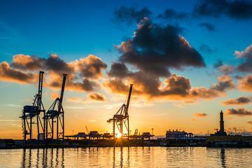 Giraffe al porto