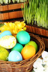 Easter eggs in basket and green grass close-up