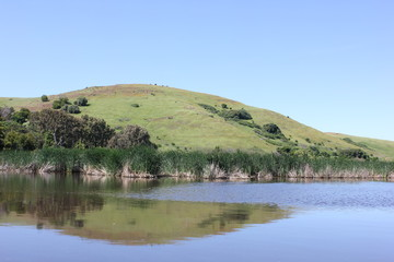 Hill reflection in pond
