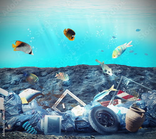 Poster Koraalriffen Seabed pollution