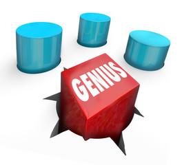 Genius Square Peg Round Hole Misfit Oddball Smart Individual