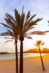 Alcudia Majorca at sunset on the beach Mallorca