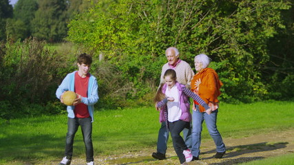 Cheerful grandparents take a walk with their grandchildren in the countryside