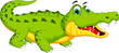 crocodile cartoon posing - 80493191