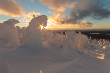 winter sunset on a snowy mountain top