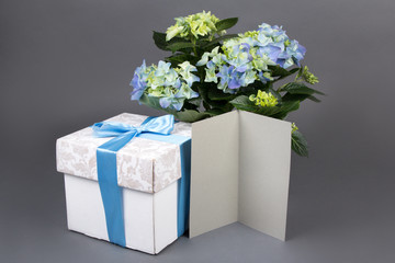 blank gift card, bouquet of hydrangea flowers and gift box over