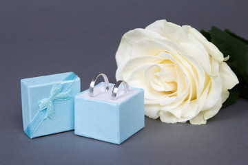 beautiful white rose flower and wedding rings in blue box over g