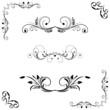 Set of floral frame - 80503362