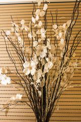 Fiori secchi in vaso