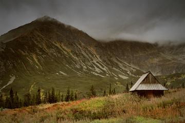 Autumn landscape in mountains.