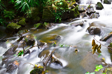 beautiful water stream