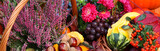 Fototapety Autumn flowers, vegetables and fruits