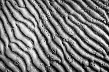 Meeresboden bei Ebbe, Sand, gerippt, Vogelspuren, Kanada