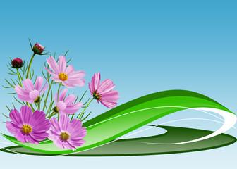 голубой фон с розовыми цветами