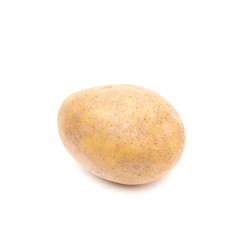Brown potato isolated