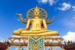 Big buddha statue - 80506993