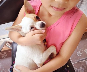 girl holding puppy with love.