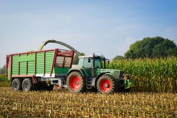 Maisernte, Ackerschlepper mit Erntewagen auf dem Feld