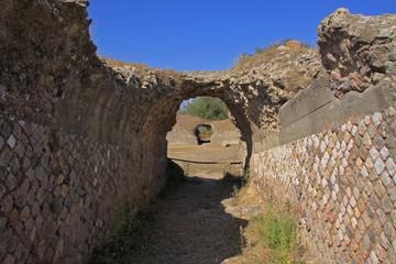 Roselle, Grosseto, anfiteatro